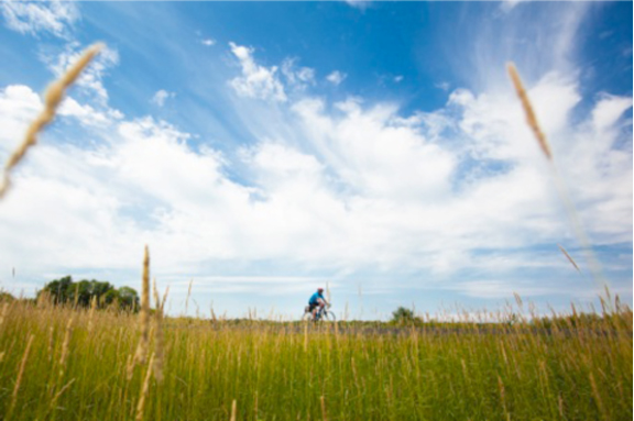 Embark on a Waterfront Trail Adventure  ©  the Waterfront Regeneration Trust