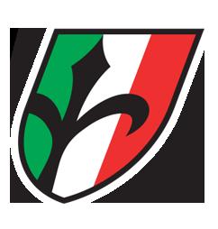 Wilier Triestina logo copy